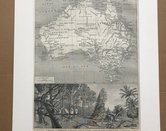 1897 Map of Australia and Australian Wildlife Original Antique Map - Mounted and Matted - Available Framed