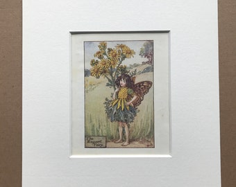 1936 The Ragwort Fairy Original Vintage Print - Flower Fairy - Cicely Mary Barker - Mounted and Matted - Available Framed