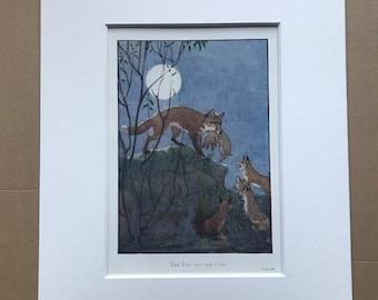 1919 Fox and Cubs Original Vintage Margaret W. Tarrant Illustration - Zoo - Animal Art - Available Framed - Nursery Decor - Children's Book