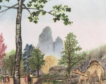 1956 Paris - The Monkey Rock in the Vincennes Zoo Original Vintage Chiang Yee Illustration - Mounted and matted - Available Framed