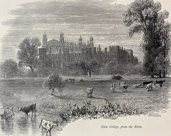 1876 Eton College, from the River Original Antique Engraving - Mounted and Matted - Available Framed
