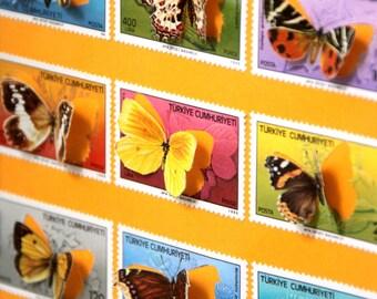 Vitrine de timbres découpés à la main illustrés de papillons, inspirée des boîtes à insectes entomologiques   Monde Minuscule #22