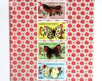 Vitrine de timbres découpés à la main illustrés de papillons, inspirée des boîtes à insectes entomologiques   Monde minuscule #24