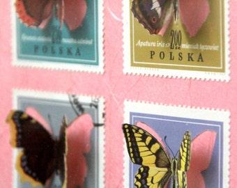 Vitrine de timbres découpés à la main illustrés de papillons, inspirée des boîtes à insectes entomologiques   Monde minuscule #4