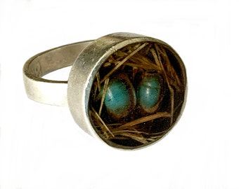 Navajo Sterling Silver & Turquoise Robins Egg Bird Nest Ring Signed F Size 8 Fannie Platero