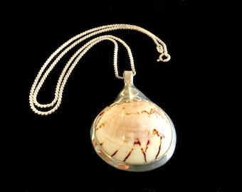 Vintage Large  Silver Sea Shell Pendant & 835 Silver Chain Necklace Handmade Signed