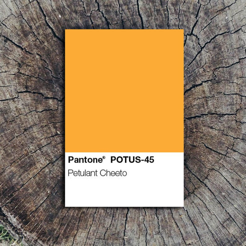Petulant Cheeto Color Swatch // Postcard image 0