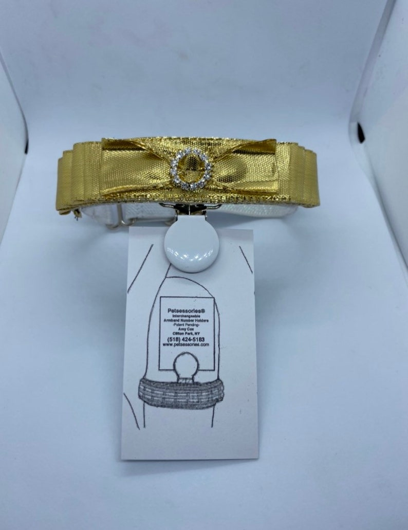 Petsessories® Interchangeable Armband Number Holder is image 0