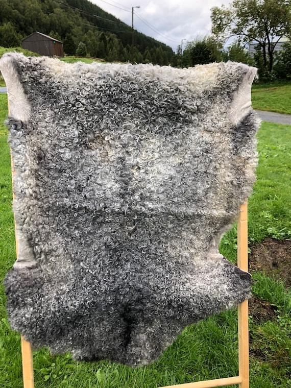 Supersoft sheepskin exclusive rug beautiful Norwegian pelt sheep skin curly grey yellow throw 20079