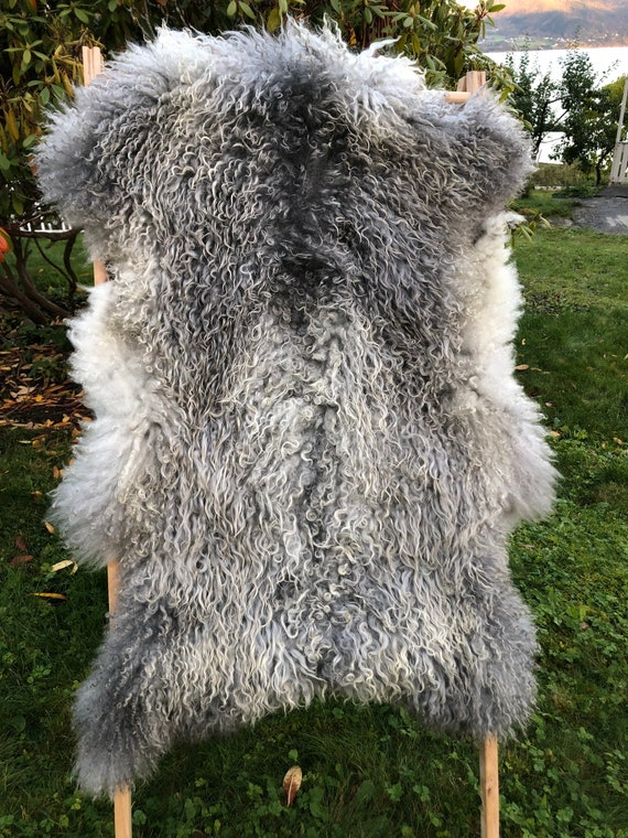 XL Supersoft sheepskin exclusive rug beautiful Norwegian pelt sheep skin curly golden grey throw 20100