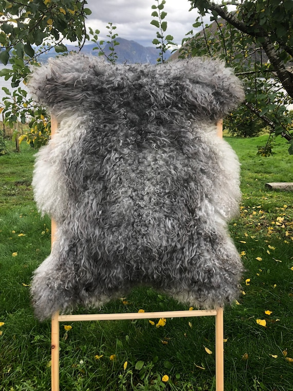 Exclusive long haired pelt curly lush sheepskin rug supersoft Norwegian sheep throw grey 21259