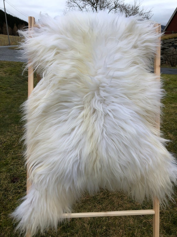 Lush pelt Long haired Sheepskin natural rug supersoft pelt rugged throw from Norwegian breed sheep skin white yellow 21109