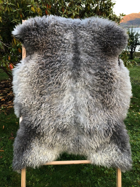 Supersoft sheepskin exclusive rug beautiful Norwegian pelt sheep skin curly grey golden throw 20097