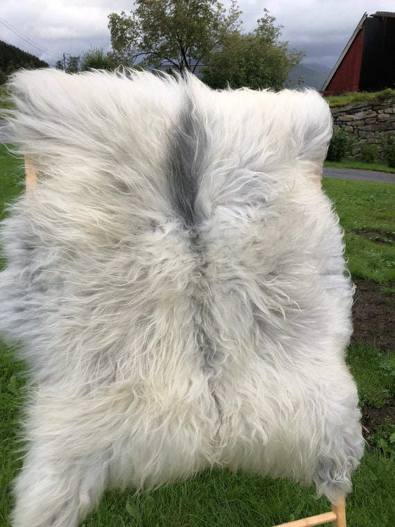 Sheepskin rug supersoft pelt rugged throw from Norwegian spael breed long haired sheep skin yellow white grey 20082