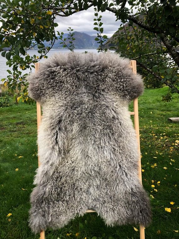 Exclusive long haired pelt curly lush sheepskin rug supersoft Norwegian sheep throw grey 21260