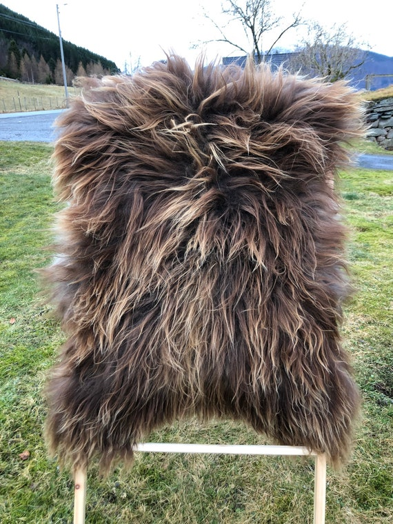 Lush pelt Long haired Sheepskin natural rug supersoft pelt rugged throw from Norwegian breed sheep skin brown golden 21113