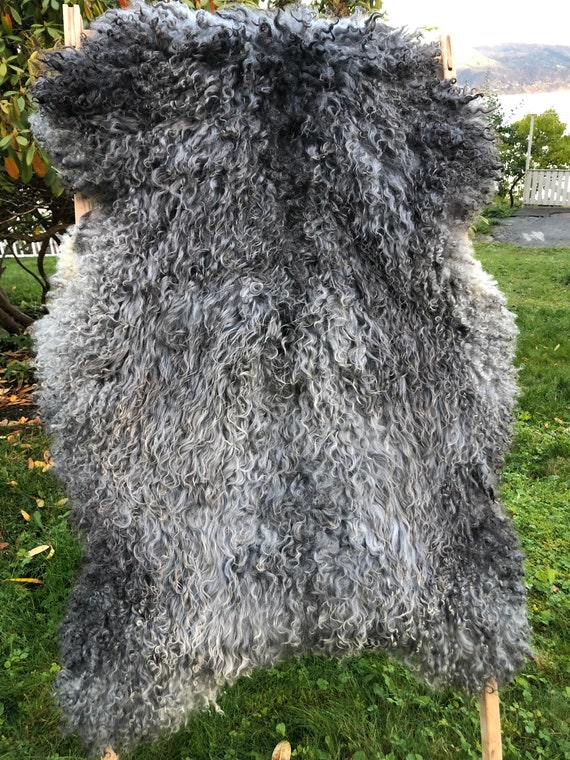Large Supersoft sheepskin exclusive rug beautiful Norwegian pelt sheep skin curly grey throw 20099