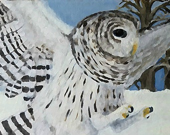 "Barred Owl print (11"" x 14"")--Barred Owl in a Snowy Winter Landscape--Digital Print of Original Wildlife Artwork"