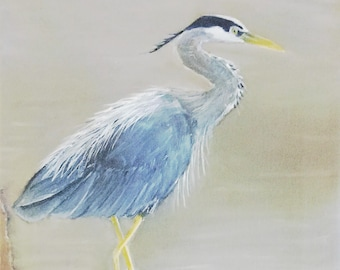 "Great Blue Heron print (11"" x 14"")--Original Wildlife Artwork (gouache filter)"