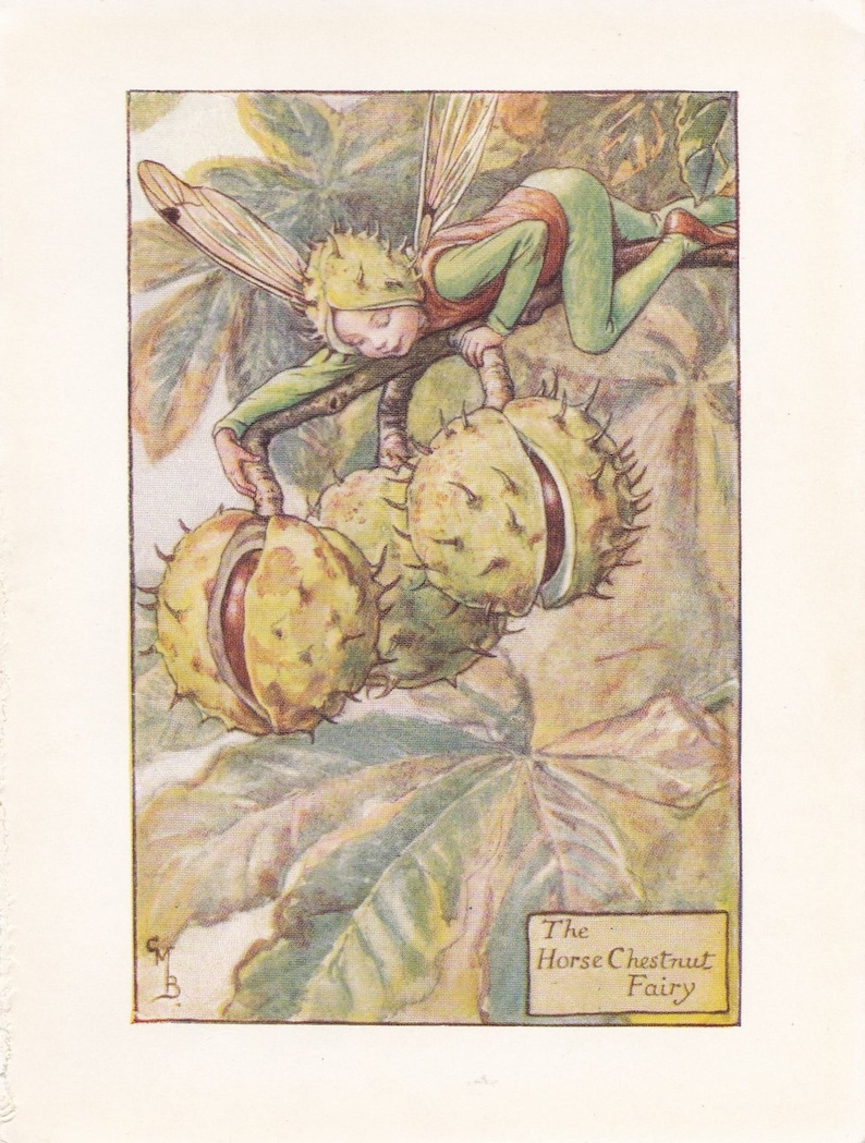 Larch Fairy by Cicely Mary Barker Spring Flower Fairies c1935 old print