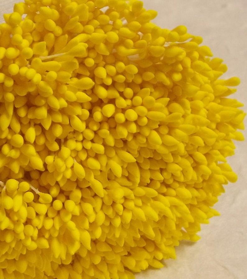Size spacial length 8 cm Artificial Stamen Yellow 500 Heads250 Pcs Carpel Millinery Flower Stamens. Water Droplets Shape