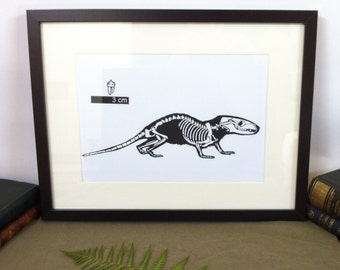 Art- Morganucodon paleontology - Silhouette cut from black canson paper 150g/m2 - Papercut Paleontology Morganucodon