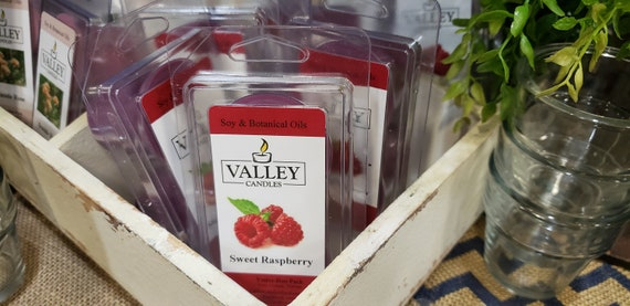 Sweet Raspberry Votive-Duo Pack