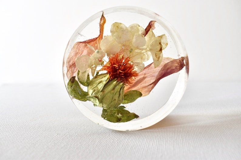 Floral Paper Weight 3 Disc Preserved flowers Dried image 0