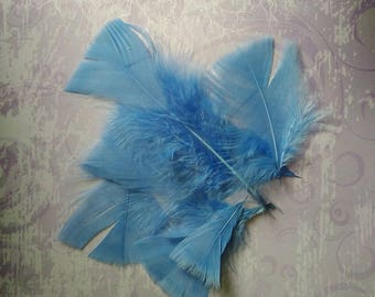 set of 10 feathers blue denim synthetic