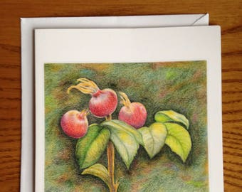 4.25x5.5 Rosehips Blank Greeting Card