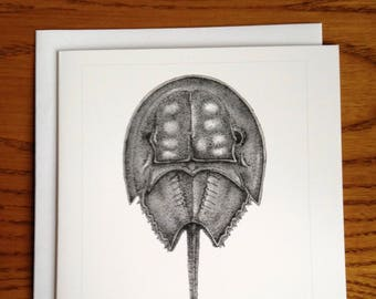 4.25x5.5 Horseshoe Crab Greeting Card