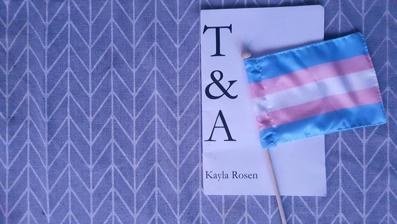 T&A Transitioning and Attractiveness Zine  Physical image 0