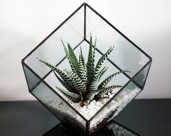 Geometric Glass Terrarium / Cube / Square / Handmade Glass Planter / Modern Planter / Stained Glass Terrarium / Terrarium