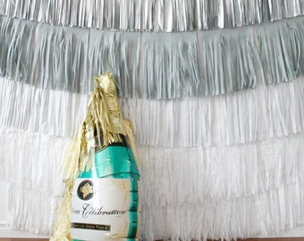 New Years Eve Backdrop Fringe Curtain, winter onederland party, Silver and Gold Photo booth backdrop, New Years Eve Party Decorations, Buffe