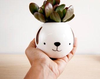 Animal ceramic planter, Dog face planter for succulent, Ceramic cactus pot, Cute animal planter, Face plant pot,  flowerpot animal face dog
