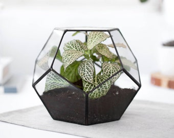 Glass Terrarium geometric container geometric planter indoor planters modern terrarium glass planter indoor planter (S10),