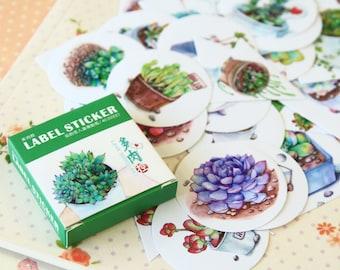 Succulent Plants Sealing Stickers cartoon Cactus deco stickers set
