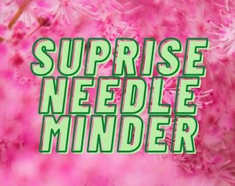 Surprise Needle Minder