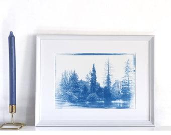 Cyanotype Hand Printed Photograph / Art Print, Trees / Nature / Scotland / Scenery / Woods / Woodland