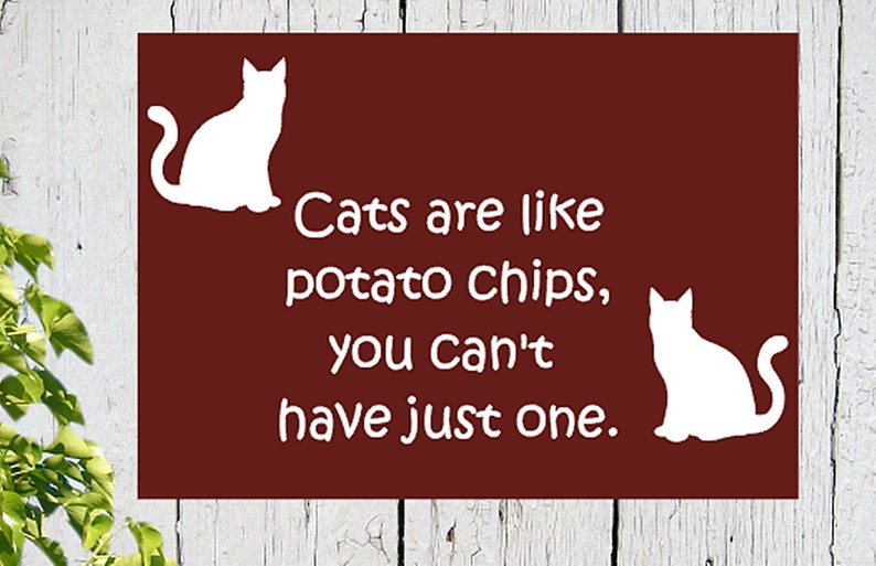 7405f348d Cat funny wood sign Cats are like potato chips you   Etsy