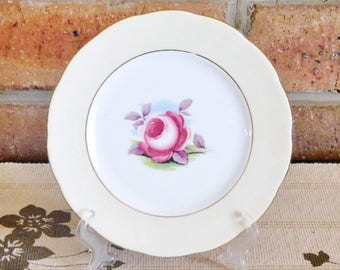 Royal Albert Painters Rose fine porcelain side, bread plate, vntage 1960s, gift idea, high tea