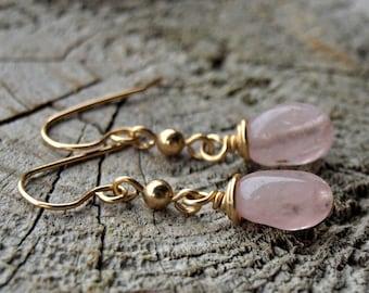 Morganite//14K Gold Fill Earrings