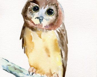 Baby owl - 8x10 original watercolor painting - bird art, nature, wildlife, nursery decor, bedroom