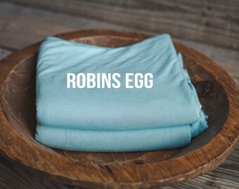 Robins Egg Backdrop - photography prop