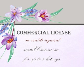 Commercial license. For up to 5 listings.