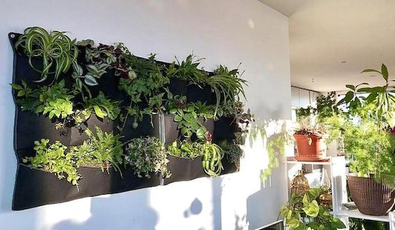 Wall Planter Indoor Vertical Garden Planter Wall Planter Plants Gift Living Wall Green Wall Gardening Gift Home Black