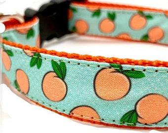 summer dog leash boy dog collar set limo-fruit dog leash boy dog collar fruit dog collar summer dog collar boy dog leash