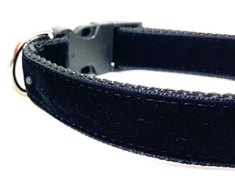 Black Velvet Dog Collar, Leash or Harness with Personalized, Engraved Metal Buckle Upgrade Option