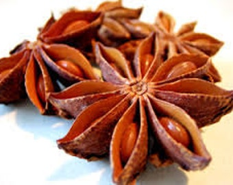Anise Star - 100% Pure Essential Oil