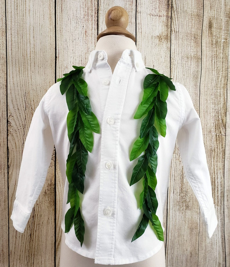 Maile Lei Toddler ButtonUp Dress Shirt image 0